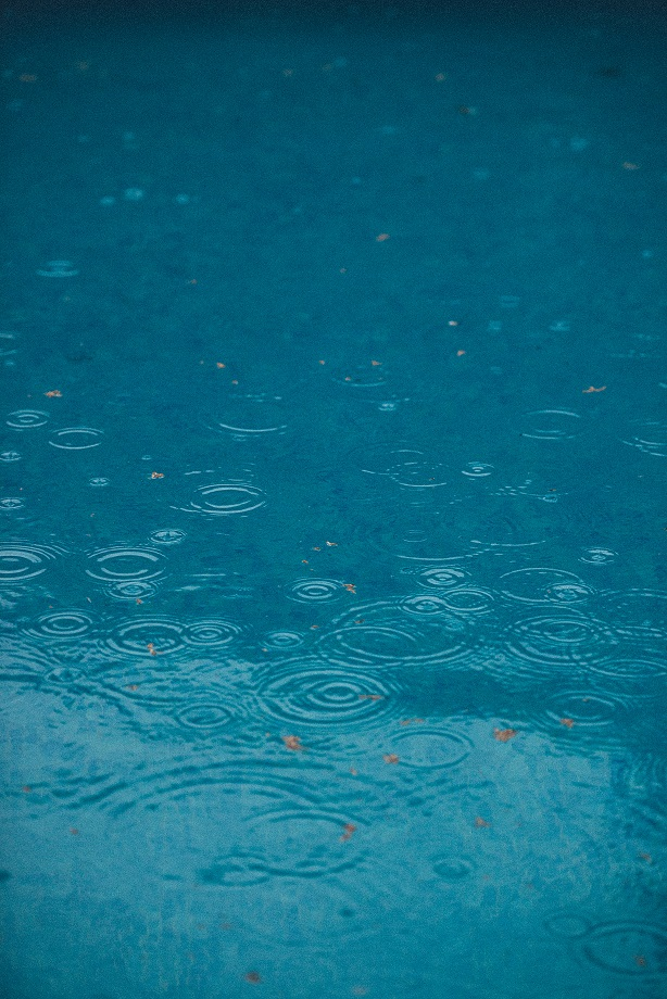 Rainfall Photo by JanFillem on Unsplash